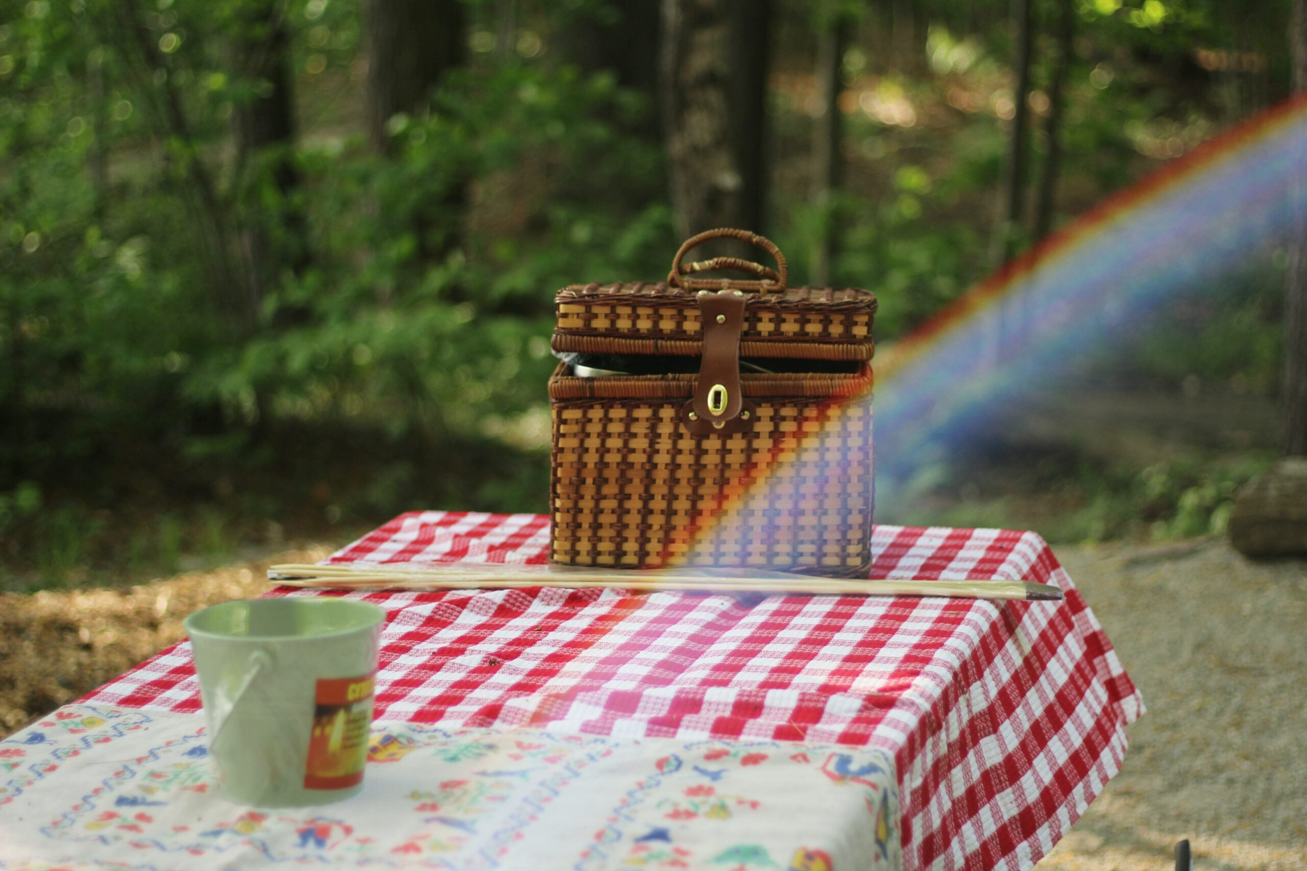 first battle picnic