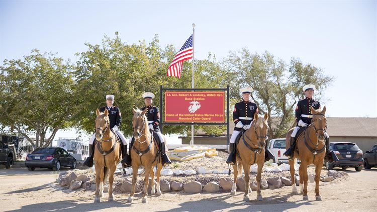 The Marine Corps' last Mounted Color Guard enters 50 years of service