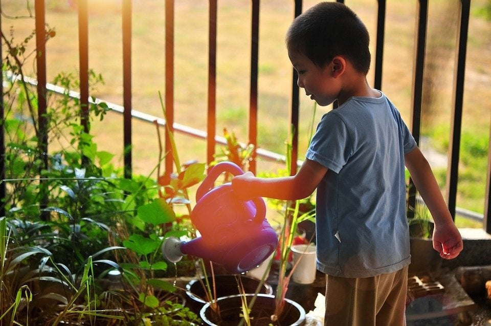 6 outside activities for kids that don't involve public places