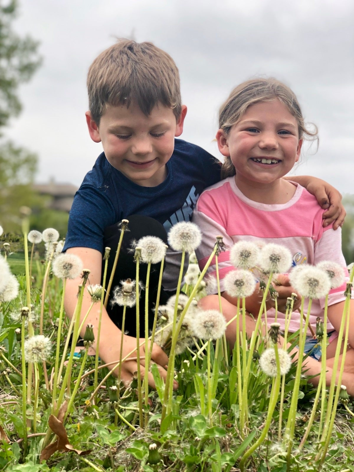 Why dandelions are the official flower of military kids